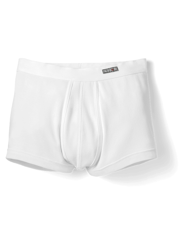 Boxer Josephine in Weiss